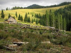 Gorgany Trekking, Nature, Vineyard, Mountains, Travel, Outdoor, Mood, Geography, Europe