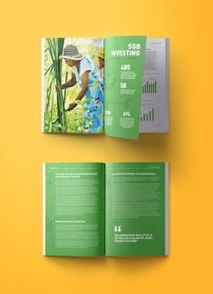 "Check out this @Behance project: ""ANDE Impact Annual Report // Print"""