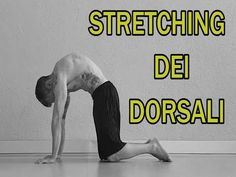 Stretching Parte 10: Lombari - YouTube