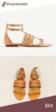 """Ann Taylor Grommet Flat Sandal Gorgeously grommeted, this luxe leather pair is scallop edged for a modern-meets-feminine finish. Open toe. Duel adjustable buckles at side ankle for secure fit. Padded foot bed for complete comfort. 1/4"""" heel. Brand new; never been worn. Ann Taylor Shoes Sandals"""