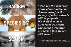 earthlings quotes - Google Search