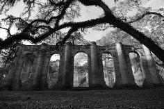 Ruins of the Old Sheldon Church near Yemassee, South Carolina.