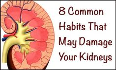 8 Common Habits That May Damage Kidneys - Vegetarian Friend