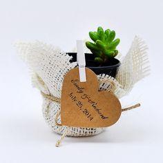 Küçük bitki, düğün hatırası