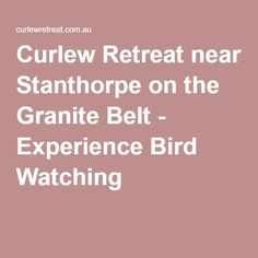 Curlew Retreat near Stanthorpe on the Granite Belt - Experience Bird Watching