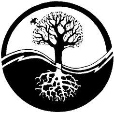 Yin-Yang-Tree! « TreeMagazine – For People who CARE!