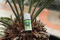 Poofy Organics we made it our mission to find the safest and most effective ingredients for our products Eucalyptus Essential Oil, Organic Essential Oils, Essential Oil Blends, Organic Oil, Aphrodite, Natural Remedies, Essentials, Christmas Ornaments, Holiday Decor