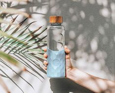It's time to invest in a reusable water bottle! Stay hydrated this Winter whilst being environmentally responsible🌿 . Glass Water Bottle, Glass Bottles, Voss Bottle, Water Aesthetic, Glass Coffee Cups, Reusable Coffee Cup, Stay Hydrated, Save The Planet, Mug Cup