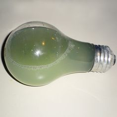 """""""This light bulb was found in a pendant fixture with no globe. The filament had failed, but current was passing through the water, making it warm.    """"A faint arcing noise was present. When removed, there was no opening in the base of the bulb and no water leaked out. Hard to explain!""""    Steve Anderson  Anderson AmeriSpec  Germantown, Tenn.    Courtesy of The ASHI Reporter    thisoldhouse.com 