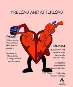 Preload Afterload