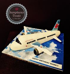 Airplane Cake ~ Custom-Made-To-Order Cakes, Cookies & Cupcakes ~ Edible Art ~ www.sumptuoustreats.com