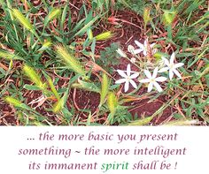 ... the more basic you present something ~ the more #intelligent its immanent #spirit shall be !