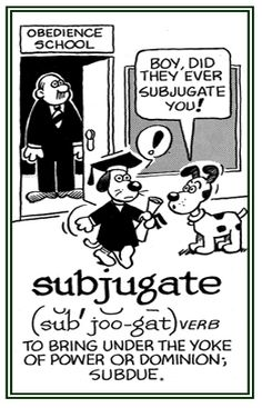 subjugate term-to conquer by force