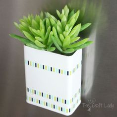 Upcycle a Pepper Shaker With Succulents