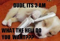 hahaha,   Hate those 3 am calls.. Can't be good