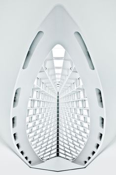 Milwaukee Art Museum / Photo by Connie Zhou
