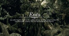 Races of Middle-earth: Ents