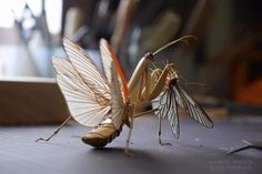 Through patience and great precision, Japanese artist Noriyuki Saitoh created insects' sculptures using Bamboo. This natural material versatility allows the artist to play with the textures and the colours, which adds an extra level of authenticity. Insect Crafts, Insect Art, Creem, Bug Art, Colossal Art, Small Sculptures, Artist Life, Japanese Artists, Asian Art