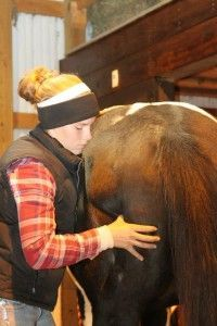 Great information about equine massage therapy!