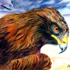Eagle Art 140 Lbs, Eagle Art, Arches Paper, Golden Eagle, Wildlife Nature, Paintings For Sale, Eagles, Bald Eagle, Watercolor Paintings