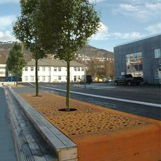STREETLIFE CorTen Tree Grille Strip. Strip-shaped growing spaces with tree granules enable urban trees to develop to their full potential. For this reason Streetlife offers beautiful CorTen steel landscaping elements for tree protection, optionally with lightning