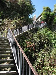 Yes, we are going to attempt the Filbert Steps in San Francisco. With a 4-year-old, no less. Wish us luck.