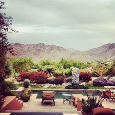 Palm Desert loved it here