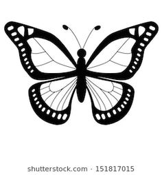 Butterfly Outline Images, Stock Photos & Vectors | Shutterstock