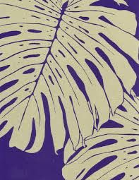 philodendron drawing - Google Search