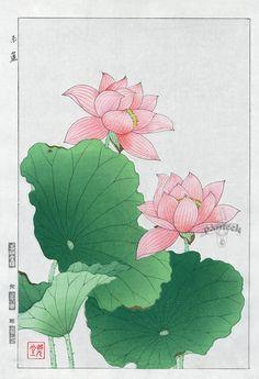 Water Lily | Tattoo Ideas & Inspiration - Japanese Art | Shodo Kawarazaki | #Japanese #Art #Waterlily