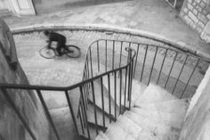 That Bicycle Shot by Henri Cartier-Bresson Golden Mean: Though the rider is not the main focal point of the image, your eye seems to go straight to him. The tone of the image really defines the difference between subject and background.