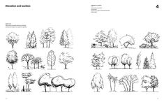 Drawing for Landscape Architects: Construction and Design Manual