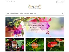 Blog Vlog – Template Free WordPress Wordpress Template, Wordpress Theme, Chinese Lanterns, Blog Sites, Sliders, Templates, Christmas Ornaments, Holiday Decor, Free