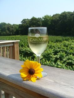 Cape May Winery NJ...where we went right after getting engaged at Diamond Beach!