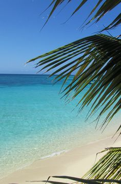 Today I want to be here!