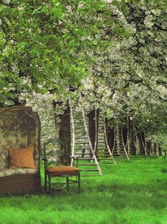 Love the setting with the flowering fruit trees, ladders & the sedan chair. photo by Lucinda Lambton   World of Interiors, July,1992