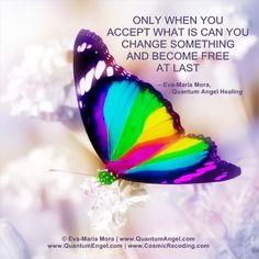 """""""Only when you accept what is can you change something and become free at last.""""  —Eva-Maria Mora, Founder & Author of QUANTUM ANGEL HEALING (Available at Amazon.com & Amazon.de)"""