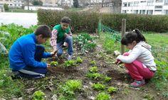 Primavera Biológica na Escola EB 2,3 da Maia