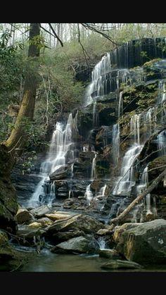 Falls on yellow branch South Carolina