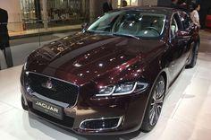 19 Best Jaguar Showroom Ideas Jaguar Showroom Jaguar Jaguar Xf