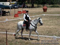 Nurallao 30 Giugno 2013: Fantino in sella al suo splendido cavallo bianco  (Nurallao June 30, 2013: Jockey riding his beautiful white horse)