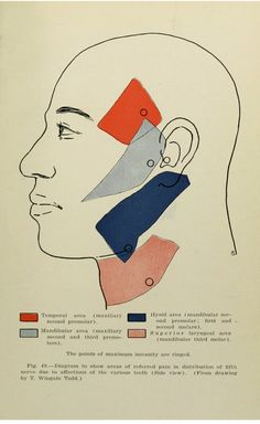 Human physiology, especially adapted for dental students, by R. G. Pearce, 1916.