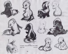 Preliminary sketches of Flower -- from Disney's adorable-yet-eternally-tragic Bambi (1942) -- by Marc Davis. I've always loved this little skunky guy.