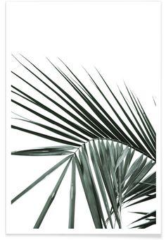 Zinkwazi en Affiche premium par Shot By Clint | JUNIQE