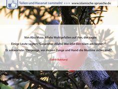 Den Islam am besten leben http://islamische-sprueche.de/hadith-zitate/den-islam-am-besten-leben/