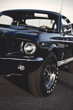 shelby mustang baby