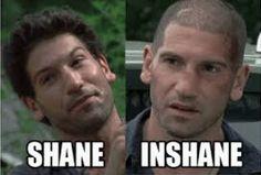 The Walking Dead ... Shane