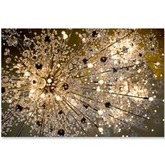 A gorgeous photographic print of the Met Opera's iconic Sputnik chandeliers. #metopera