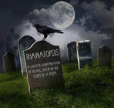 Thanatopsis.   Syllabification: than·a·top·sis. Pronunciation: than-uh-top-sis, thăn`ȧ tŏp sĭs.                                                                                noun. Definition: 1. a view of or musing or contemplation upon death…