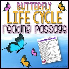 Butterfly Life Cycle Reading Passage